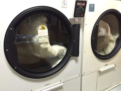 しももとクリーニングの個別洗い